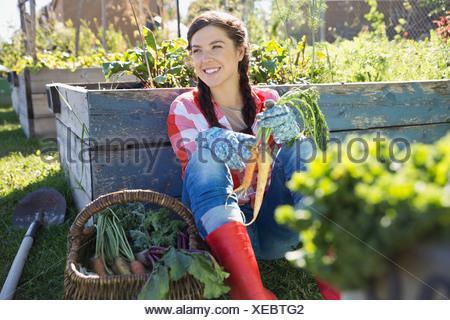 Woman holding freshly harvested carrots in community garden - Stock Photo