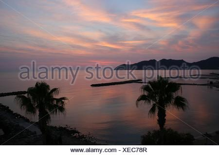 Silhouette Palm Trees In Front Of Sea Against Cloudy Sky During Sunset - Stock Photo