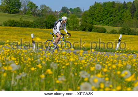 Young woman on a racing bicycle, Upper Bavaria, Bavaria, Germany, Europe - Stock Photo