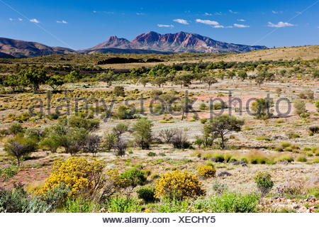 Mt. Sonder, West MacDonnell National Park, Northern Territory, Australia - Stock Photo