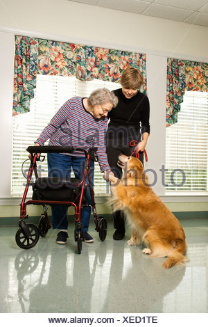 Elderly Caucasian woman using walker and middle aged daugher petting dog in hallway of retirement community center - Stock Photo