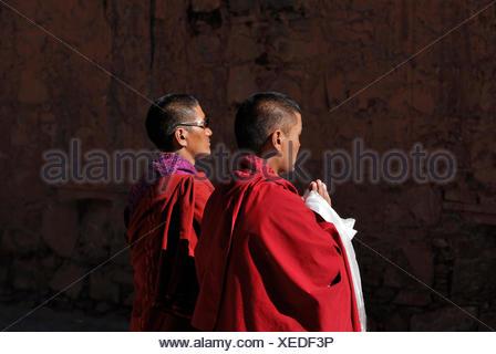 Praying monks, Paelkhor Monastery Complex, Pelkhor Choede, Gyantse, Tibet, China, Asia - Stock Photo