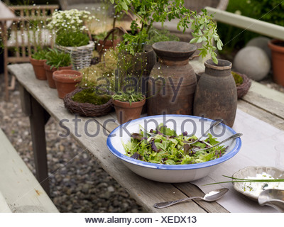 ... Still Life, Bowl Of Salad Surrounded By Decorative Garden Accessories  On An Old Wooden Table