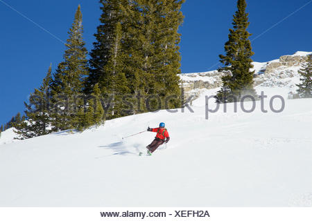 A teen boy skiing fresh powder on a sunny day after a storm. - Stock Photo