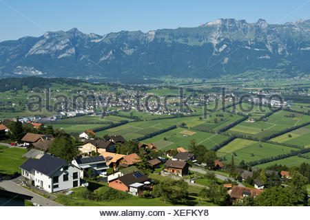 View from Planken across the Rhine valley - Stock Photo