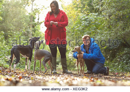 Young couple and three whippets in forest - Stock Photo