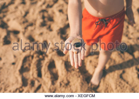 Low Section View Of Boy Showing Pebbles On Beach - Stock Photo