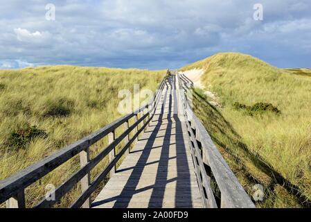 Die Promenade führt durch die Dünen zum Strand in der Nähe von Kampen, Sylt, Nordfriesische Inseln, Nordsee, Nordfriesland, Schleswig-Holstein, Deutschland - Stockfoto