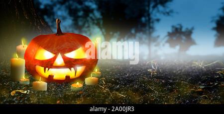 Jack O Laternen Kürbis mit leuchtenden Kerzen in den gruseligen Nacht Wald - Banner. Halloween Szene Hintergrund. Copyspace für Text. - Stockfoto