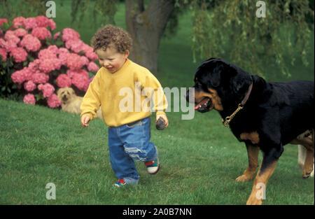 Kleinkind in Garten mit Rottweiler Hund - Stockfoto