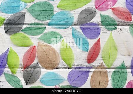Wunderschöne natürliche Kunst Zusammensetzung der farbigen, transparenten Blätter, weiße Holzbrett Tabelle. Von multi Hintergrund - farbige Skelett Laub. Ansicht von oben, f