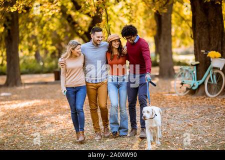 Gruppe der multirassischen Junge Leute wandern im Herbst Park und Spaß haben - Stockfoto