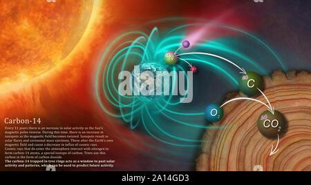 Abbildung: Darstellung der Entstehung von Kohlenstoff-14 und wie wird es im Baum Ringe gesperrt. - Stockfoto