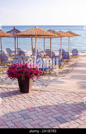 Sonnenuntergang Sandstrand mit Blumentopf von lila Blumen und Holz Sonnenschirme in Halkidiki, Griechenland Coast Resort - Stockfoto