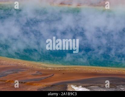 Close-up von Dampf stieg von Grand Prismatic Spring, Midway Geyser Basin, Yellowstone National Park, Wyoming, USA