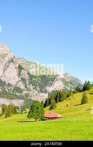 Grüne alpine Landschaft in der Nähe von Kandersteg in der Schweiz im Sommer eingefangen. Wiesen, felsigen Hügeln. Schweizer Alpen, Felsen und Berge. Eine Spur führt zu Oeschinensee See, vertikale Foto. - Stockfoto