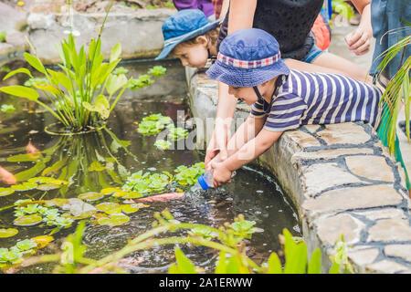Junge füttern Koi Fisch mit Milch aus der Flasche. - Stockfoto