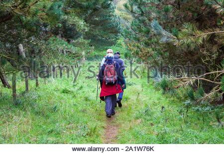 Drei Wanderer zu Fuß durch die Wälder entlang der Berwickshire Coastal Path in den Scottish Borders - Stockfoto