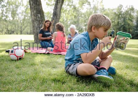Junge Junge an Bugs in jar Suchen mit Lupe - Stockfoto