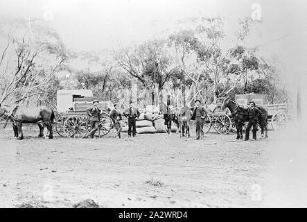 Negative - See, Victoria, ca. 1900, Männer mit Wagen und Pferde - Stockfoto