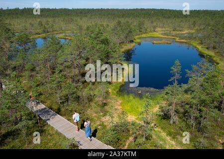 Luftaufnahme von Touristen zu Fuß auf der Promenade von Viru Moor, Lahemaa Nationalpark, Harjumaa, Estland - Stockfoto