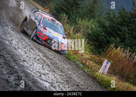 Andreas Mikkelsen (Norwegen) Fahrt durch die Myherin Stufe der Wales Rally GB2019 in Hyundai i20 WRC World Rally Car - Stockfoto