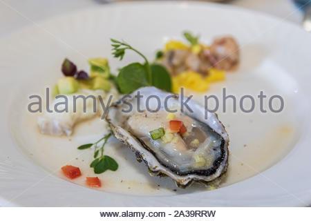 Peruanisches Essen. Choros a la chalaca. Große Muscheln, Choros zapatos gewürzt mit lila Zwiebeln, Tomaten, Mais und Zitrone. - Stockfoto