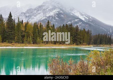 Blick auf die Rocky Mountains über den Bow River in der Bergstadt Banff Alberta - Stockfoto