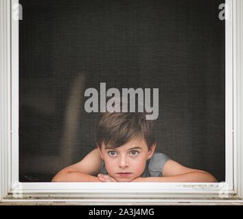 Junge Blick durch den Bildschirm eines geöffneten Fensters.