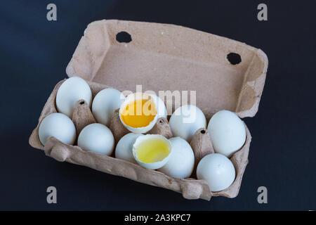 Weiße Eier und eine gebrochene Eier im Karton mit Mockup in Text. Natürliches protein. Das gesunde Essen. - Stockfoto
