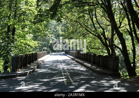 Straße, die zu den Columbia River Gorge National Scenic Area in Oregon - Stockfoto
