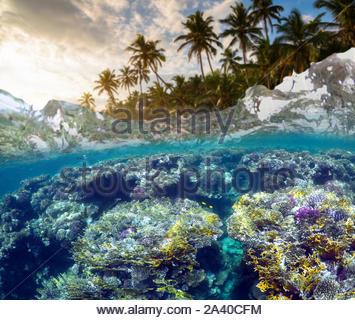 Unterwasser Szene mit Riff und tropischen Fischen. Schnorcheln im tropischen Meer. Sommer Urlaub am Meer - Stockfoto