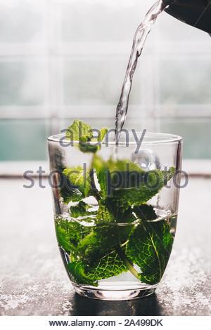 Frische Minze Tee in der Nähe der Fenster. Gemütlich zu Hause oder Gesundheit Konzept - Stockfoto