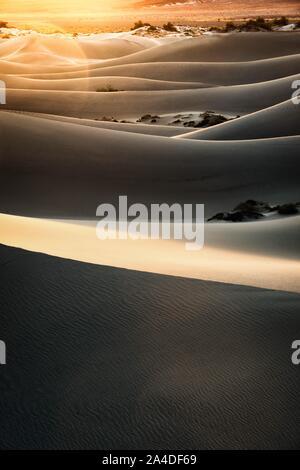 Mesquite flachen Sand Dünen bei Sonnenaufgang, Death Valley National Park, California, United States - Stockfoto
