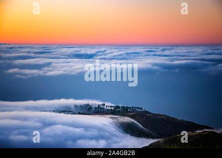Natur Hintergrund mit Sonnenaufgang über den Wolken. Es liegt auf dem Gipfel des Pico do Arieiro Berg, Madeira, Portugal. Die Bäume sind eingehüllt in die - Stockfoto