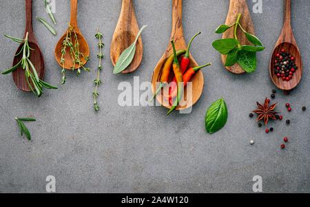 Verschiedene Gewürze und Kräuter in der Kochlöffel. Flach Gewürze Zutaten Chili, Pfeffer, rosemarry, Thymian, Sternanis, Salbei und Basilikum - Stockfoto