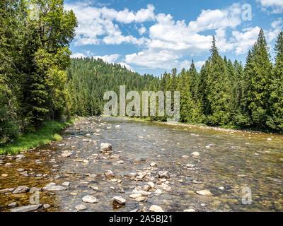 Mountain Stream über felsige Flussbett mit Bäumen und blauen Himmel im Hintergrund fließt.