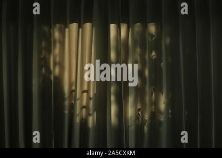 Baum Blätter Schatten werfen Licht und Schatten auf braun Vorhang. Nachmittag im Haus. verschlafene Atmosphäre zu Hause. traurig, deprimiert eingesperrten Psychologie und die c - Stockfoto