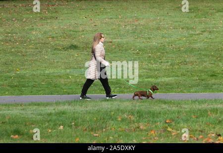 London, UK, 20. Oktober 2019. Eine Frau geht mit ihrem Hund auf Wimbledon Common an einem kalten Herbst Sonntag. Credit: Amer ghazzal/Alamy leben Nachrichten - Stockfoto