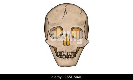 Unheimlich glühenden Schädel von innen isoliert auf weißem mit Rissen - Spooky Abbildung im Comic-stil. - Stockfoto
