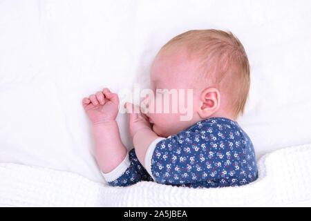 Neugeborenes Baby schlafend auf einem weißen Blatt. Cute Baby - Stockfoto