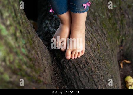 Kleinkinder Fuß stehend auf dem Baum Wurzeln ohne Schuhe. Natürliche barefoot Lifestyle. - Stockfoto