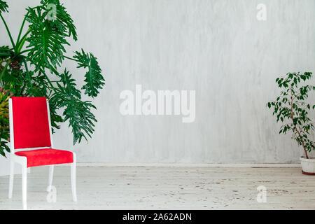 Red Chair mit Home Pflanzen in das Innere der grauen Raum - Stockfoto
