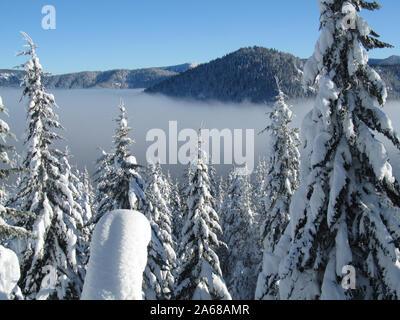 Eine verschneite Winter Blick von Barlow Butte über den Nebel auf dem Weg zum Geist Ridge. Mt. Hood National Forest. Mt. Haube Wildnis.