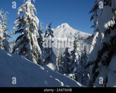 Ein Blick durch einige schneebedeckte Bäume zu einem schneebedeckten Mt. Haube. Auf dem Weg zum Gipfel des Ghost Ridge im Mt fotografiert. Hood National Fores