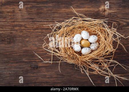 Bird's Nest mit Eiern und einem goldenen Ei, metamorphing für Führung und ganz einzigartig. - Stockfoto