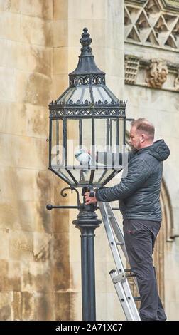 Ein Arbeiter steht auf einer Leiter und reinigt eine elektrische Glühbirne in einer Lampe vor dem Haupteingang zum King's College, Universität Cambridge, England. - Stockfoto
