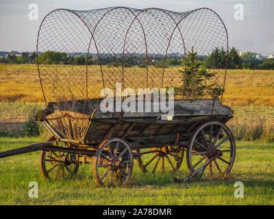 Alte Planwagen auf einer Wiese - Stockfoto