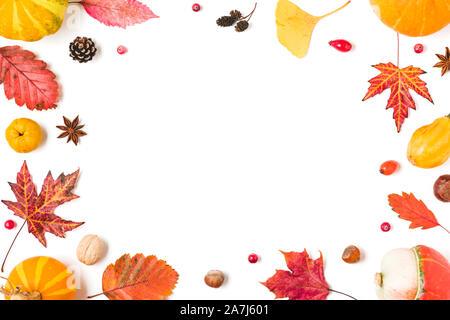 Herbst Komposition. Rahmen aus Herbstlaub, Kürbisse, Blumen, Beeren, Quitte, Muttern auf weißem Hintergrund. Herbst, Halloween, Thanksgiving Day conce - Stockfoto