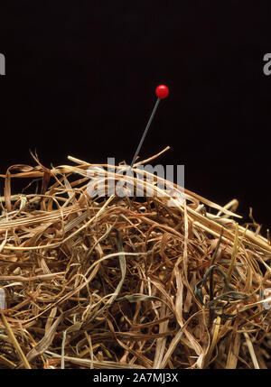 Auf der Suche nach verlorenen Nadel im Heuhaufen. Die Suche. Verloren und gefunden - Stockfoto